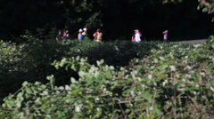 Distant Firefighter, Power Company Workers, Onlookers at Brush Fire Stock Footage