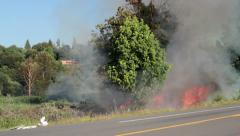 Roadside Brush Fire with Flames Stock Footage