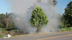 Roadside Brush Fire - stock footage