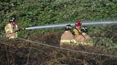 5 Firefighters & Fallen Power Line at Brush Fire Stock Footage