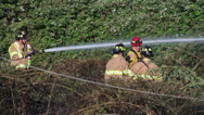 Stock Video Footage of 5 Firefighters & Fallen Power Line at Brush Fire