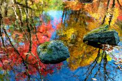colorful water reflection - stock photo