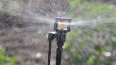 Microjet Sprinkler For Water Irrigation - stock footage