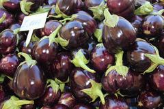 Fresh market produce of aubergines Stock Photos