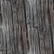 seamless wood texture old background tree pattern brown nature t - stock photo