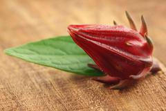 roselle with green leaf - stock photo