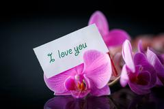 Phalaenopsis line with a declaration of love Stock Photos
