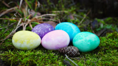 Easter eggs in different colors on moss in forest Stock Footage