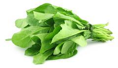 Spinach bundle Stock Photos