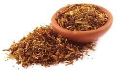 Tobacco for making cigarette Stock Photos