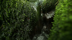 Stream running over stones covered with moss in a forest - stock footage