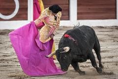 Spanish bullfighter manuel jesus el cid with the capote or cape bullfighting  Stock Photos