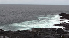 P03108 Galapagos Islands Rocky Shore and Blowhole Stock Footage