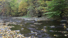 Little mountain river running through an autumn landscape with trees Stock Footage