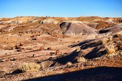 Alien landscape Stock Photos