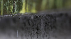 Rain water drops forming and dripping of concrete covered with the moss Stock Footage