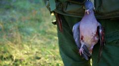 Hunters walk away with hunted bird Stock Footage