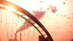 Beautiful romantic sunset background. birds swarm. slow motion. red sky. smoke Stock Footage