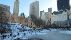New York City Central Park in snow Stock Footage