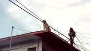 Stock Video Footage of Dog On Roof Top