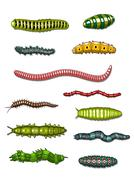 caterpillars and worms - stock illustration