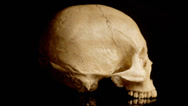 Stock Video Footage of Human skull rotating
