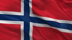 Flag of Norway - seamless loop Stock Footage