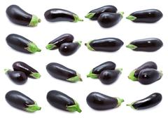 Aubergine - stock illustration