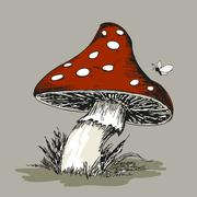 Stock Illustration of Mushroom Amanita with grass