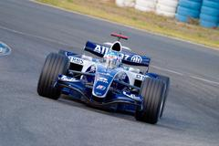 team williams f1, alex wurz, 2006 - stock photo
