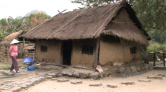 Thatched Roof Home - stock footage