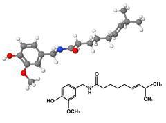 Capsaicin molecule with chemical formula Stock Illustration