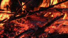 Branches burning on a bonfire Stock Footage