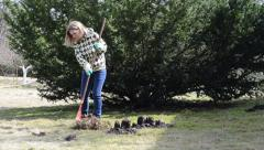 Woman raking leaves in pile next to the molehills Stock Footage