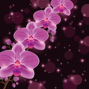 Bright greeting or invitation card with orchid Stock Illustration