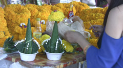 Flower Arranging p288 Stock Footage