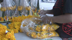 Unpacking Flower Heads p289 Stock Footage