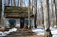 Stock Photo of Heritage cottage with pails on maple trees to collect sap for maple syrup