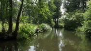 Stock Video Footage of Boat trip, Spreewald 04