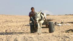 Beduin girl on a donkey cart Stock Footage