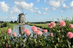 windmill and flowers in holland - stock photo