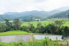 agricultural areas in the mountains - stock photo