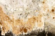 Stock Photo of Mold wall