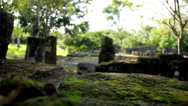 Stock Video Footage of Maya ruins on Cozumel island, Mexico (7)