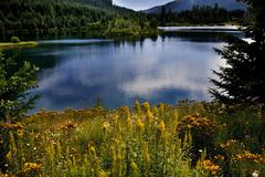 gold lake snoqualme pass washington - stock photo
