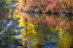 Deep fall colors wenatchee river stevens pass leavenworth washington Stock Photos