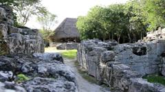 Maya ruins on Cozumel island, Mexico (9) Stock Footage