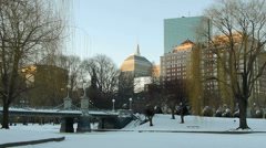 Boston Park in Winter Stock Footage