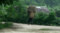 Farmer walking with a basket hay in Mai Châu Stock Footage