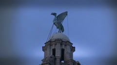 The Liver Bird Stock Footage